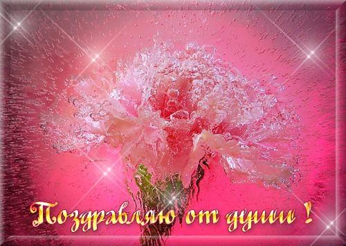 http://hostingkartinok.com/uploads/images/2012/01/04019669d21c5bb04bdd6493a898ba3f.jpg