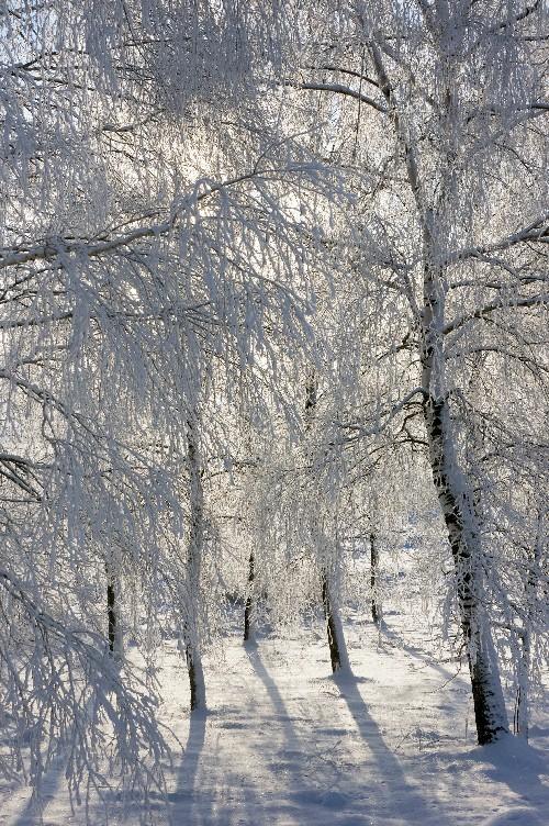 http://hostingkartinok.com/uploads/images/2012/01/93bbf04aa49e2a9178baa3633aacaf07.jpg