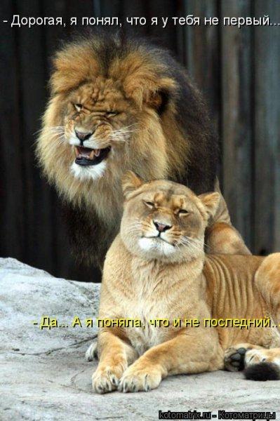 http://hostingkartinok.com/uploads/images/2012/04/c2a9a90bfe3925719eecc3b13c24a56c.jpg